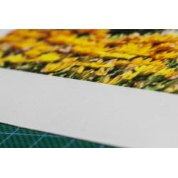 Wydruk 60x90cm - Płótno Océ Canvas Matt 370g